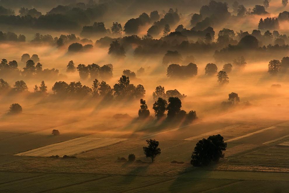 3611 100 изумительных фотографий тумана (часть 2)