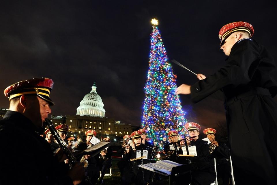 4193 Рождественские елки со всего мира