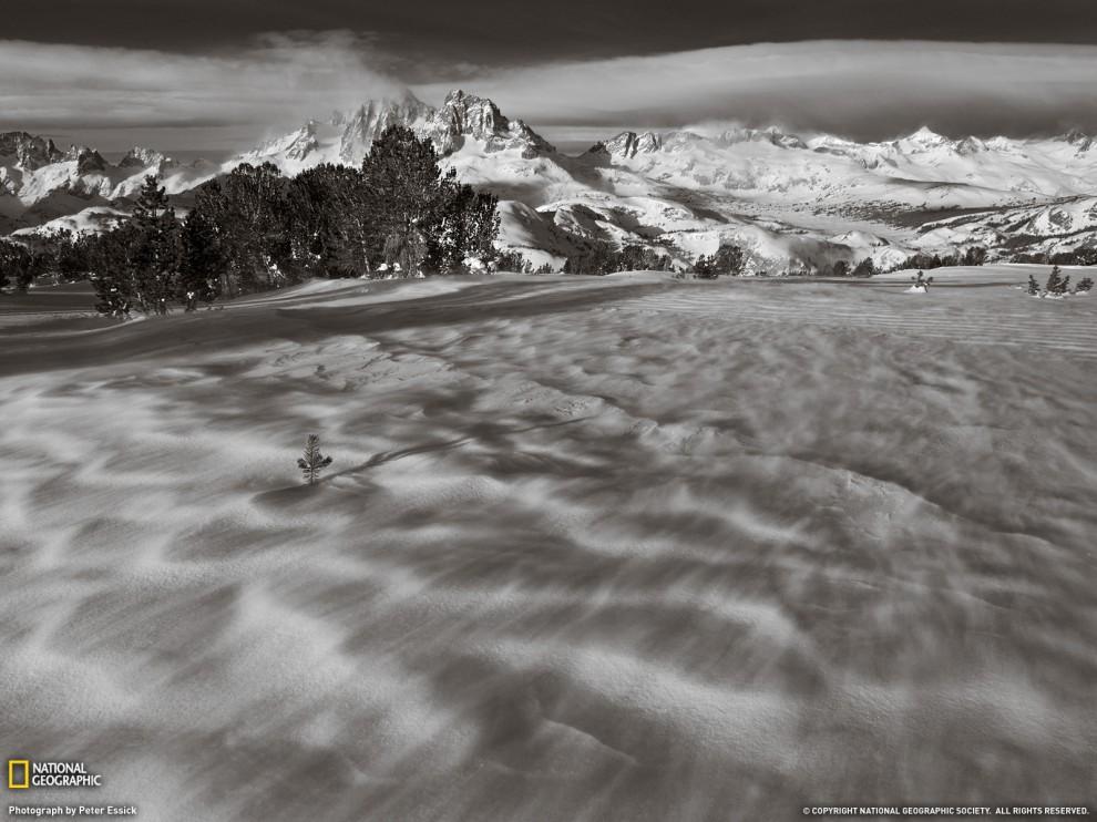 44 990x742 Лучшие фото ноября от National Geographic
