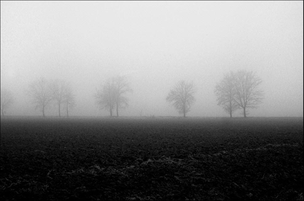 475 100 изумительных фотографий тумана (часть 2)
