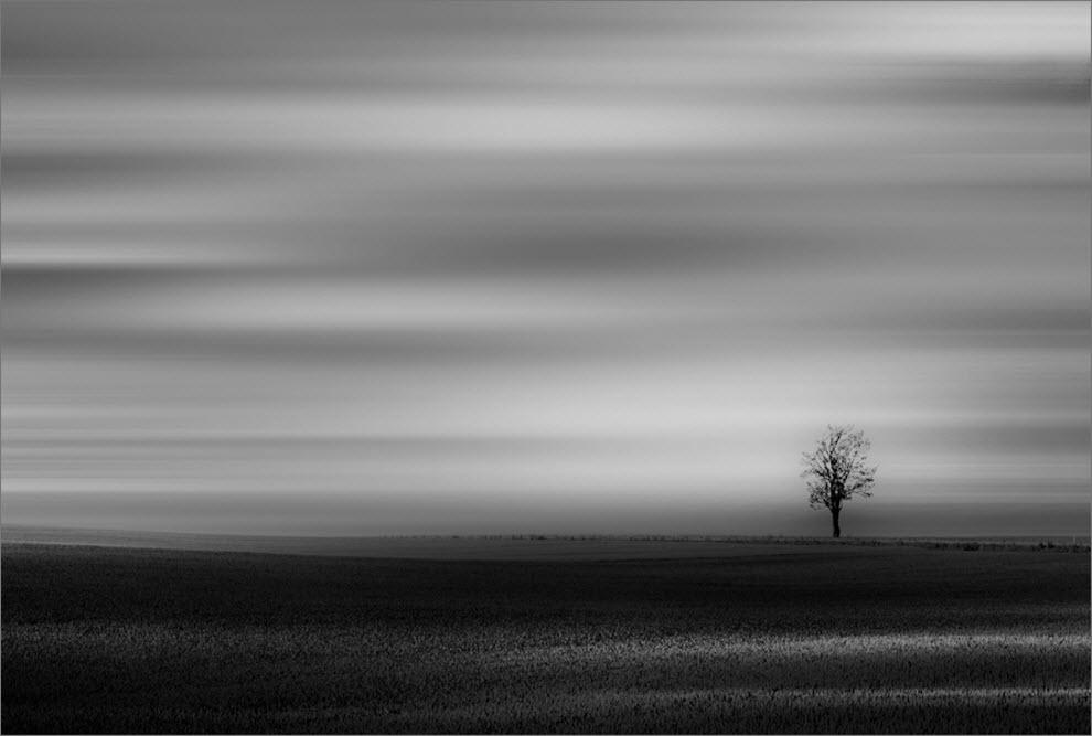 485 100 изумительных фотографий тумана (часть 2)