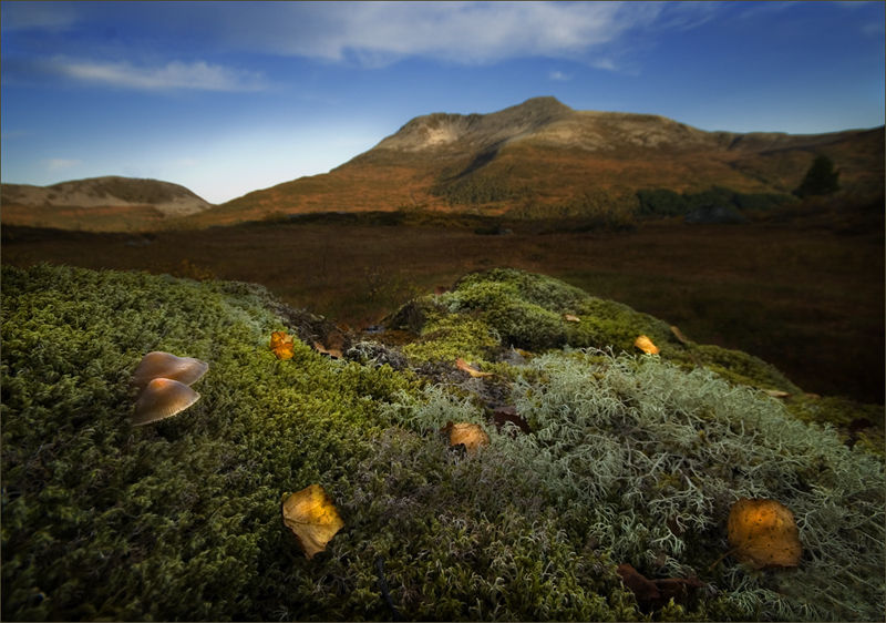 5135 Красоты Норвегии от Йона Колбенсена
