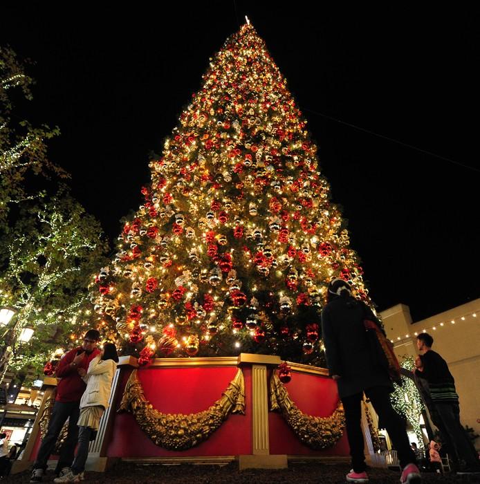 5148 Рождественские елки со всего мира
