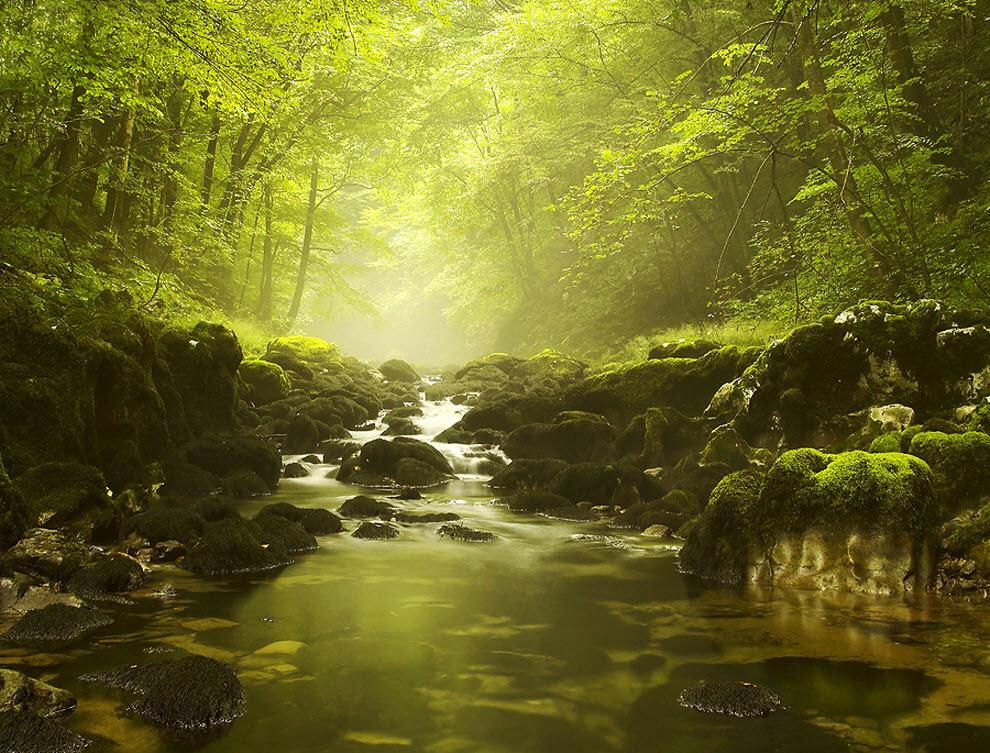 552 100 изумительных фотографий тумана (часть 2)