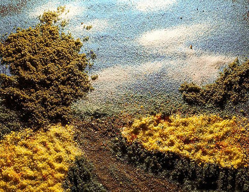 60000000 Картины из соли и специй