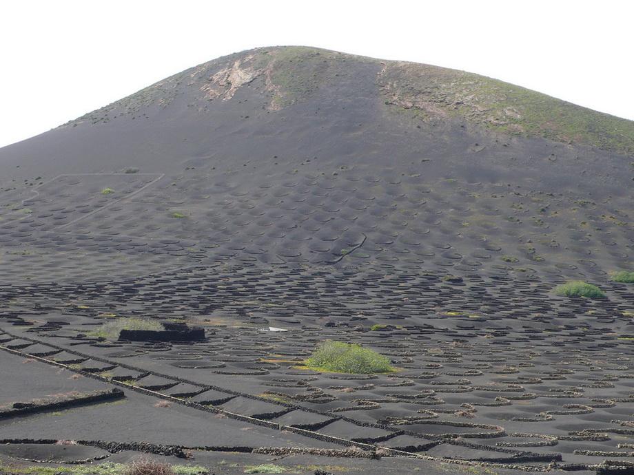 688 Вулканические виноградники острова Лансароте