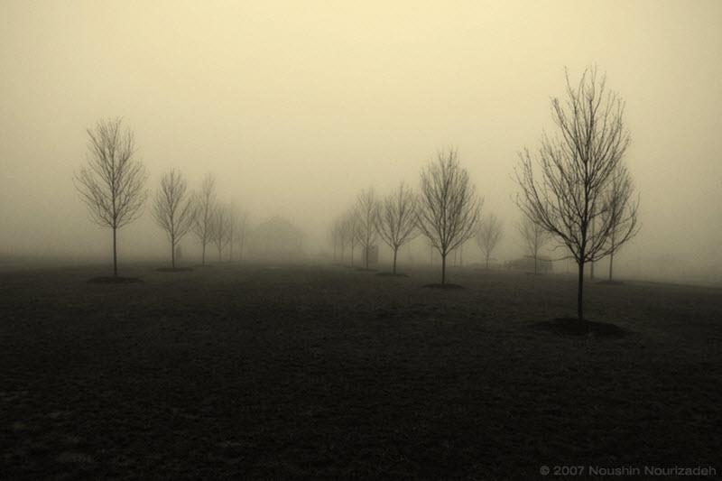 747 100 изумительных фотографий тумана (часть 2)
