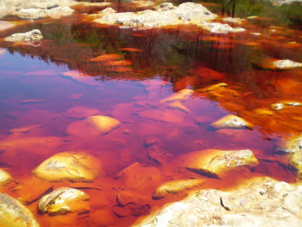 В реке обитает множество окисляющих железо и серу бактерии, что привело к такой глубокой окраске воды.