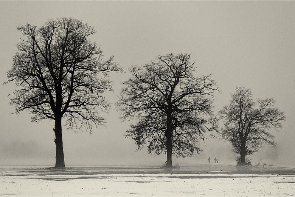 845 100 изумительных фотографий тумана (часть 2)