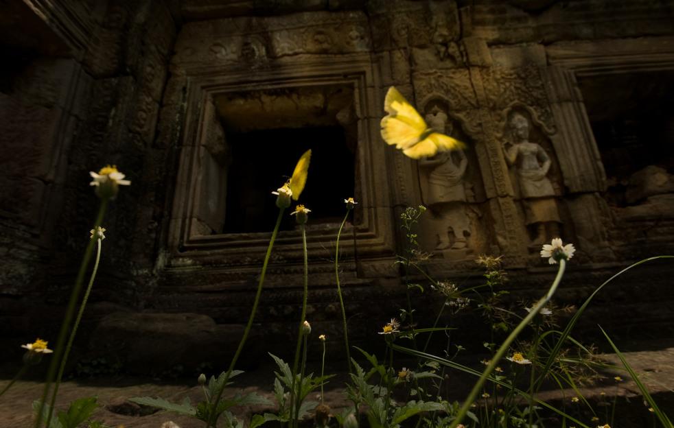 angkor wat b 16 Храмовый комплекс Ангкор Ват