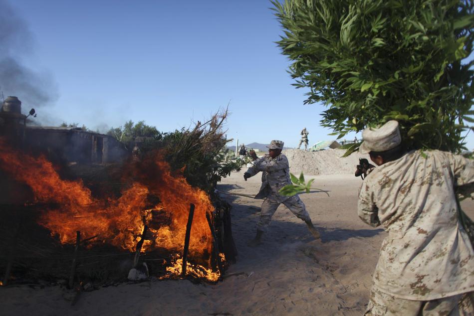 drugwar14 Нарковойна в Мексике: 5 лет кровопролития