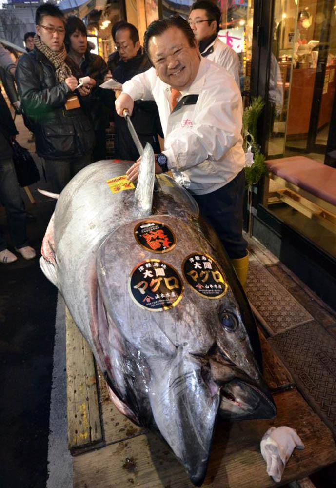 000 Hkg6765831 В Японии разделали гигантского тунца за 736 тысяч долларов