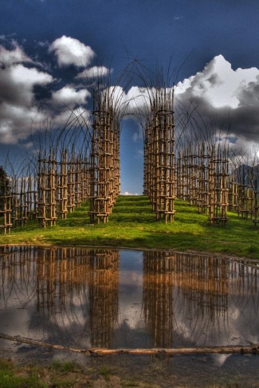 0013 Храм из растущих деревьев в Италии