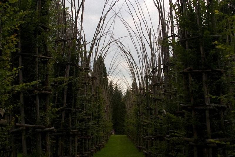 0033 Храм из растущих деревьев в Италии