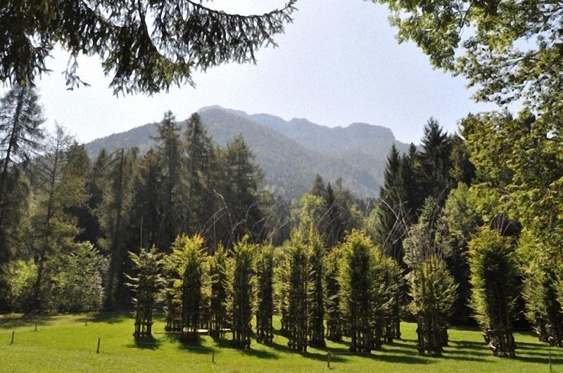 0192 Храм из растущих деревьев в Италии