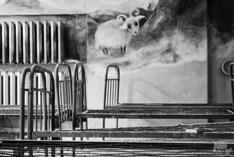 """0218 800x537 Лучшие фотографии России 2011. Номинация """"События / Повседневная жизнь"""". Часть 1"""