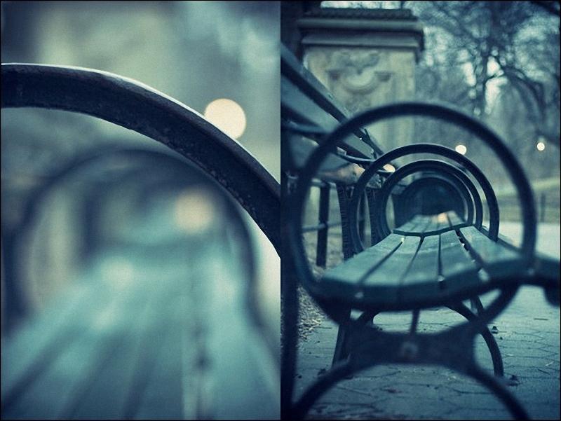 040 Лучшие примеры фотографий с боке
