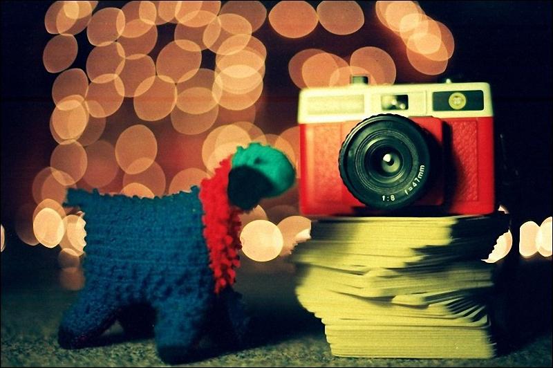087 Лучшие примеры фотографий с боке