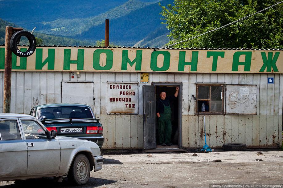 10128 Алтай: Дорога к пчелам за 4 млрд рублей