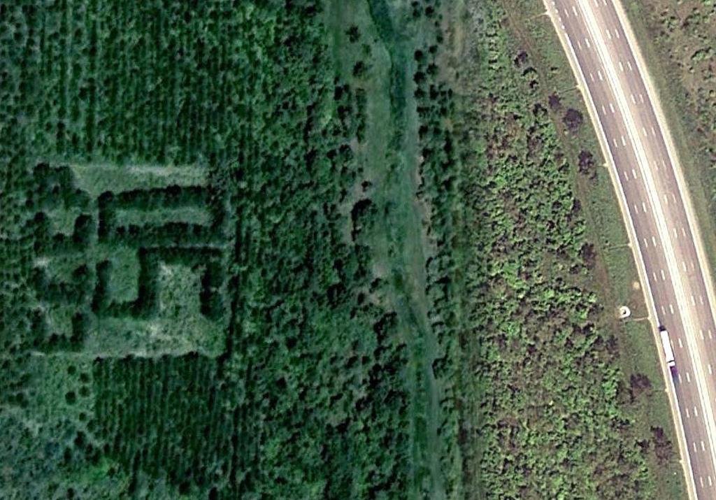 1044 Надписи из деревьев в разных уголках бывшего СССР
