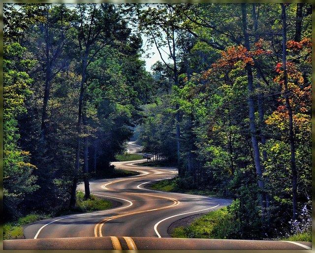11130 Пейзажи с автомобильных дорог