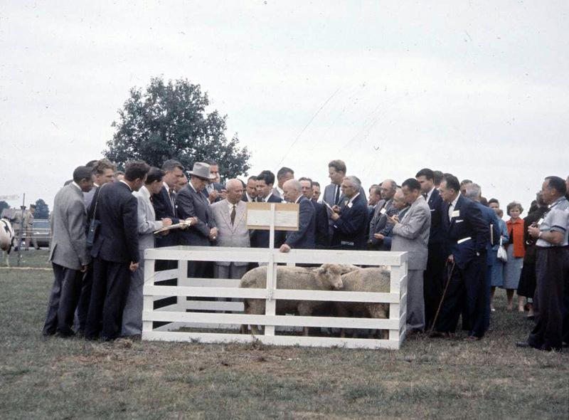 1151 Визит Хрущёва в Америку в 1959 году