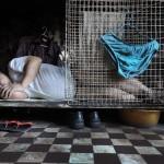 """Жизнь в """"собачьих клетках"""" в Гонконге"""