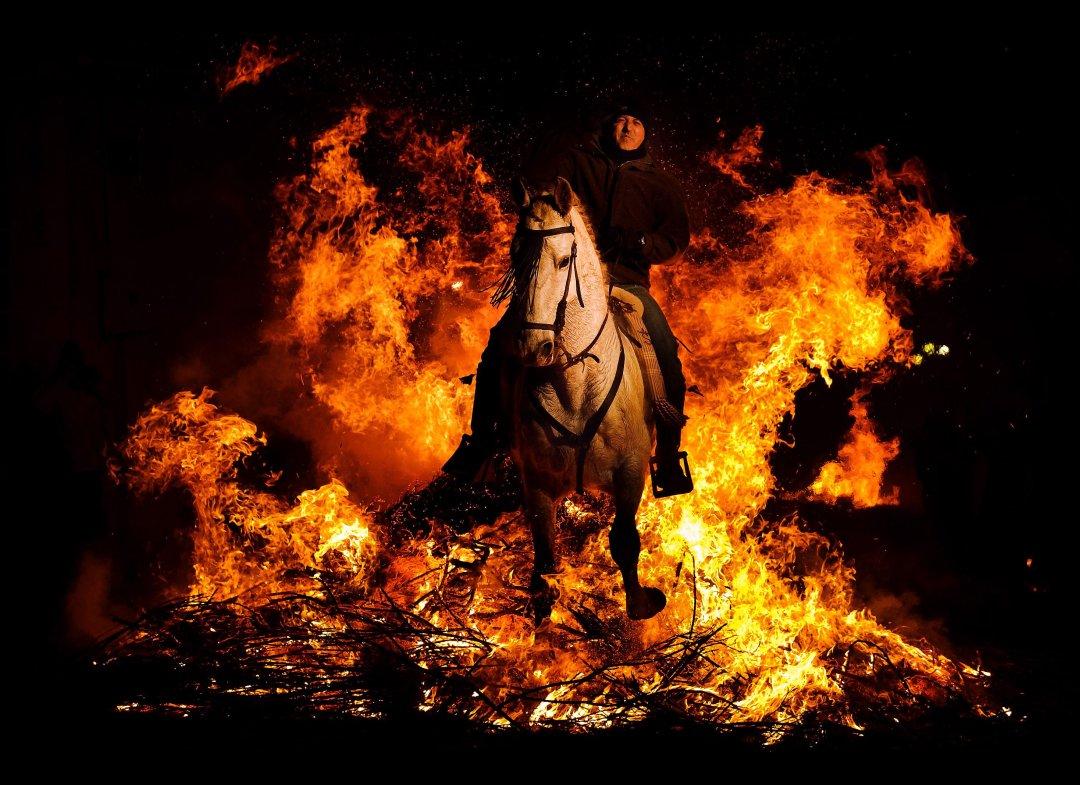 1205 День Святого Антония