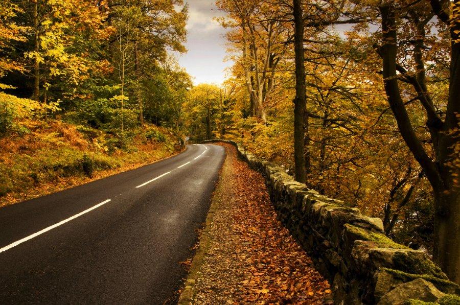 1383 Пейзажи с автомобильных дорог