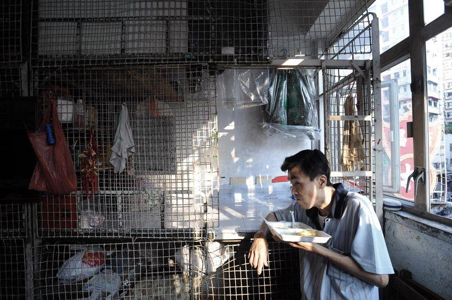 1442 Жизнь в собачьих клетках в Гонконге
