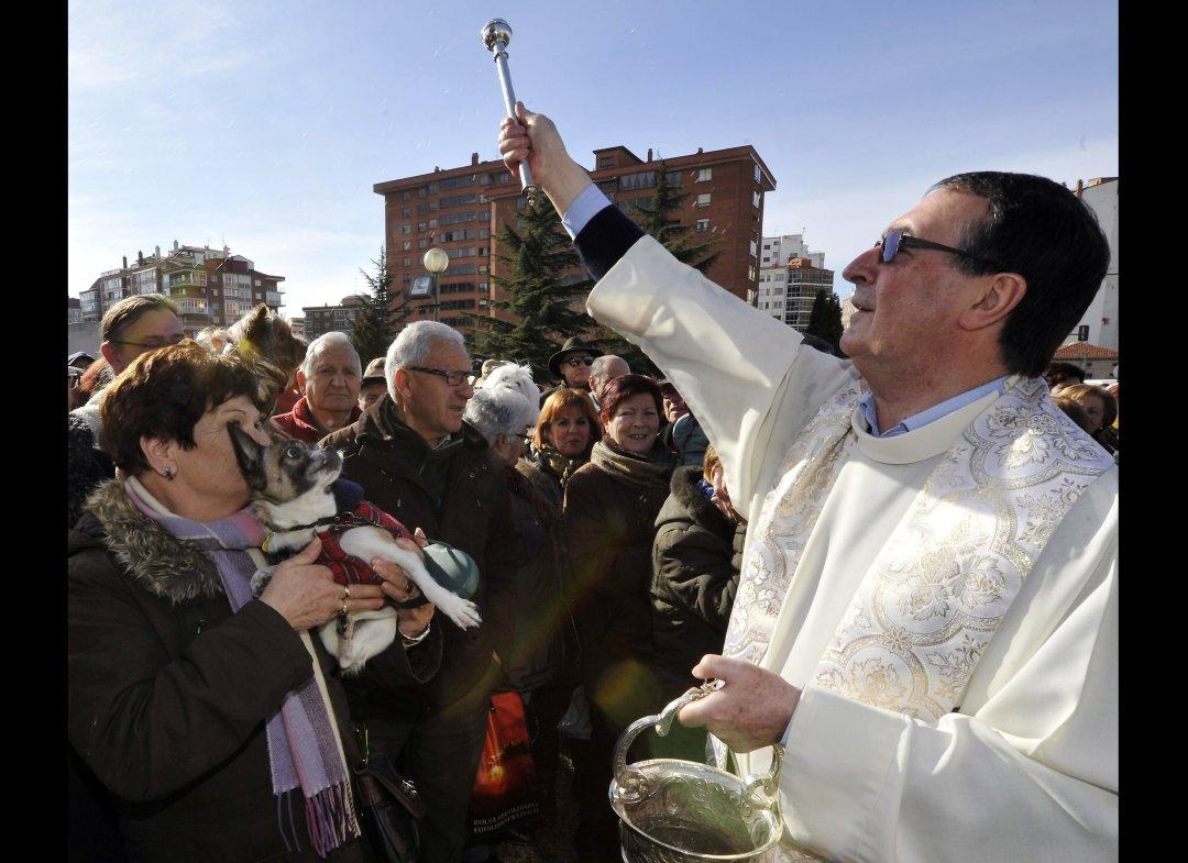 1458 День Святого Антония