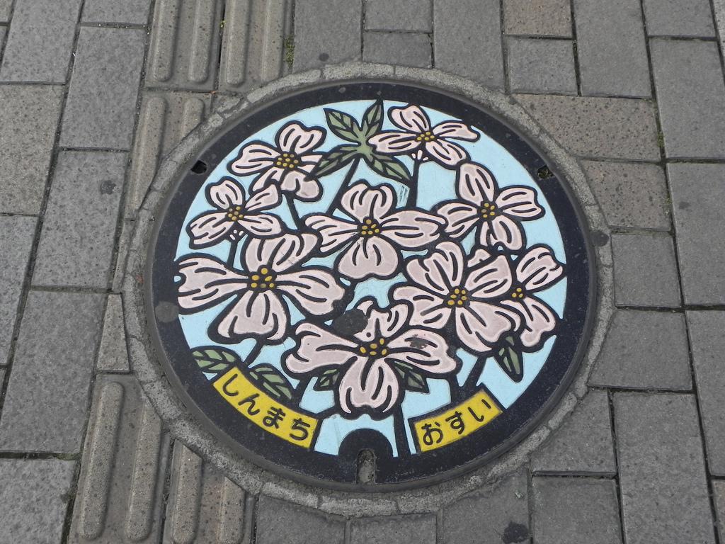 1864 Необычный уличный арт: Канализационные люки из Японии
