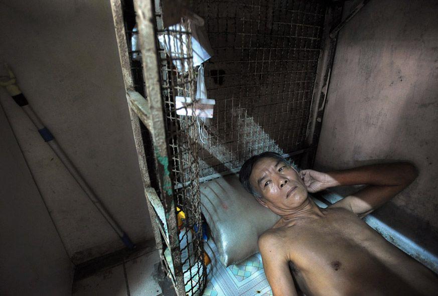 2147 Жизнь в собачьих клетках в Гонконге