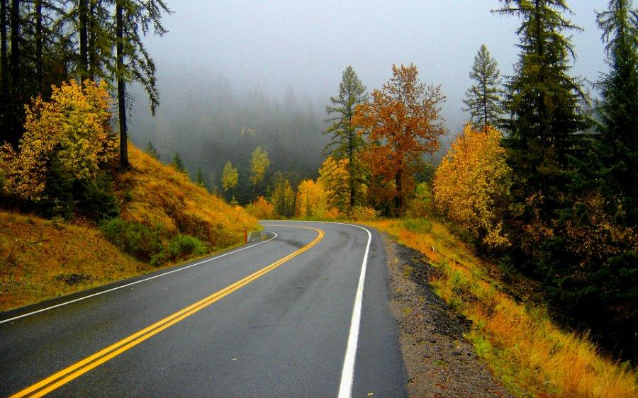 2248 Пейзажи с автомобильных дорог