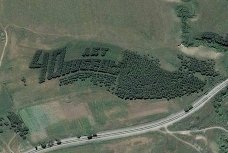 2326 Надписи из деревьев в разных уголках бывшего СССР