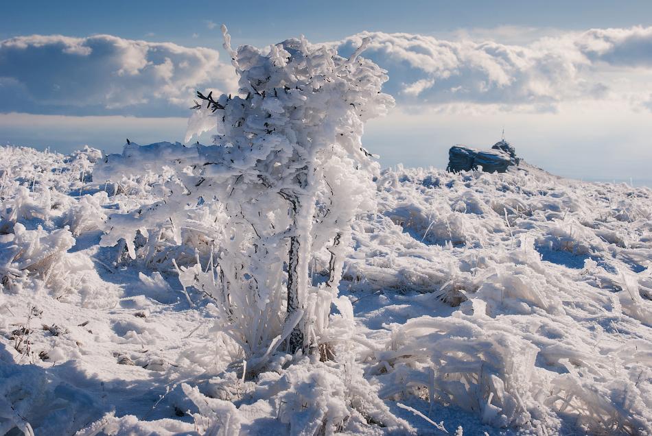 2334 Зимний Крым