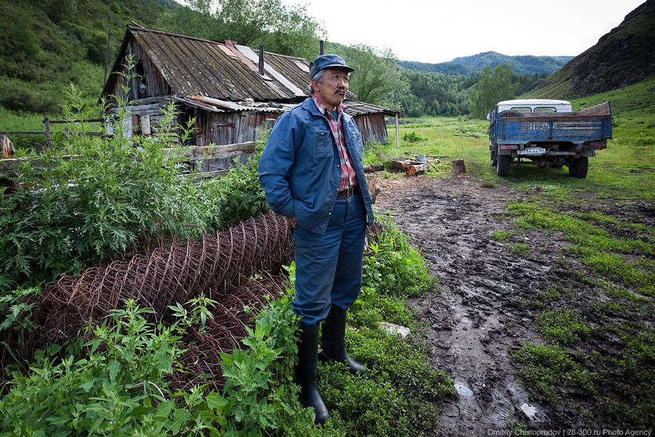 4020 Алтай: Дорога к пчелам за 4 млрд рублей