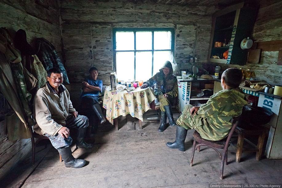 4421 Алтай: Дорога к пчелам за 4 млрд рублей