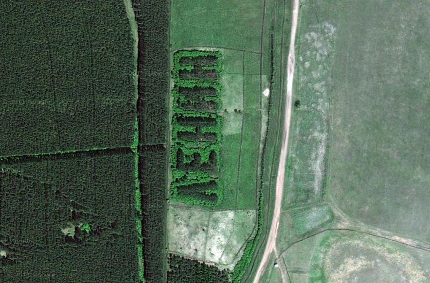 487 Надписи из деревьев в разных уголках бывшего СССР