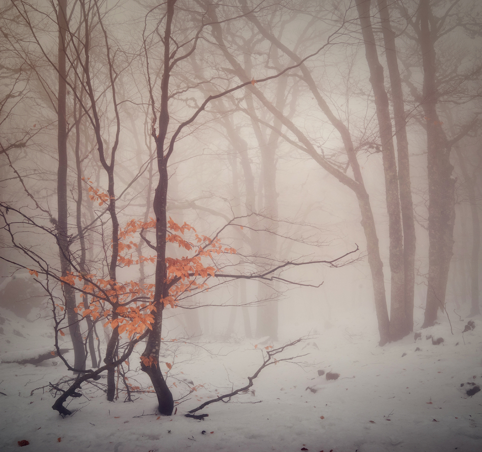 5311 Зимний Крым