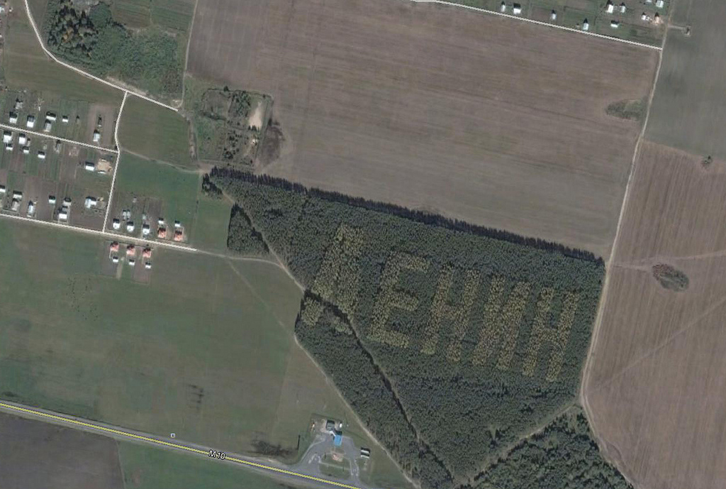659 Надписи из деревьев в разных уголках бывшего СССР