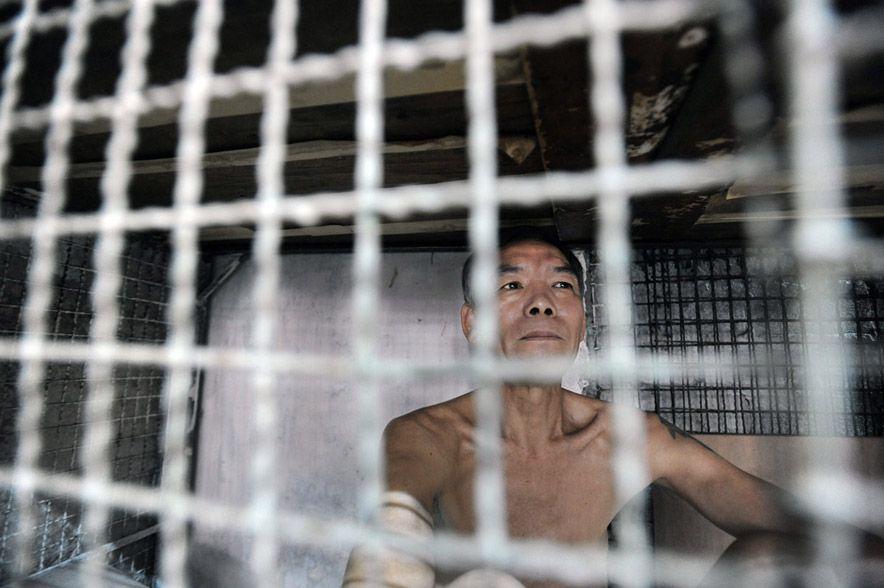 668 Жизнь в собачьих клетках в Гонконге