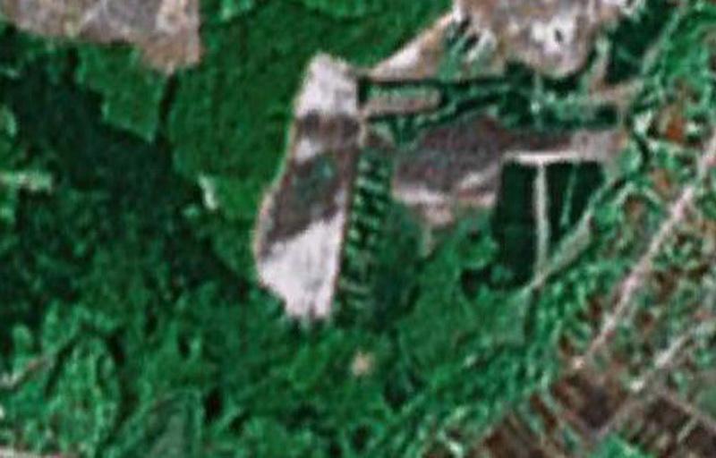 753 Надписи из деревьев в разных уголках бывшего СССР