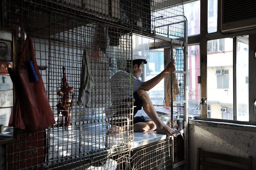 759 Жизнь в собачьих клетках в Гонконге