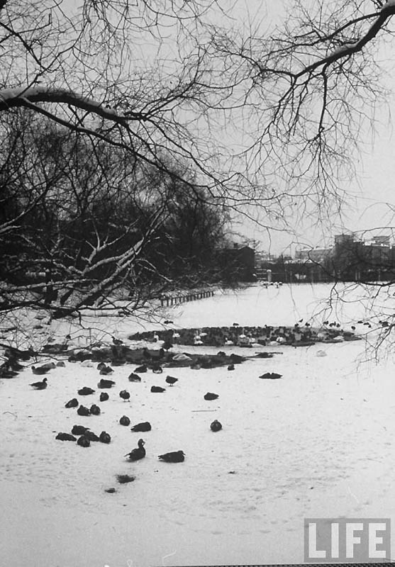 Moscow 22 Москва зимой 1959 года