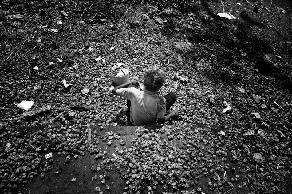deathfor50rupees018 Наркомания в Индии: смерть по 50 рупий