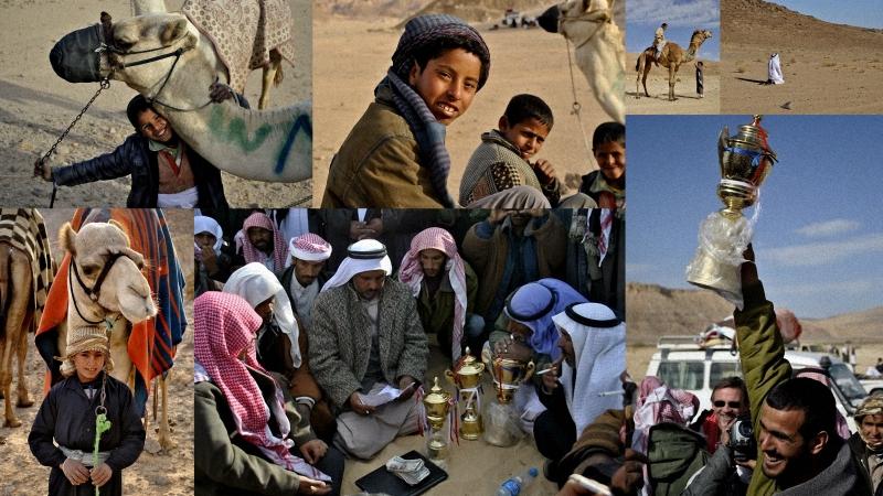 Camel Race, а еще, как не спешить по-бедуински