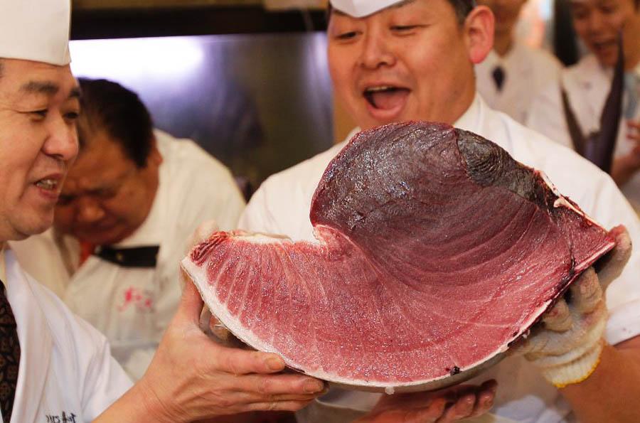 image 300750 galleryV9 jqdm В Японии разделали гигантского тунца за 736 тысяч долларов