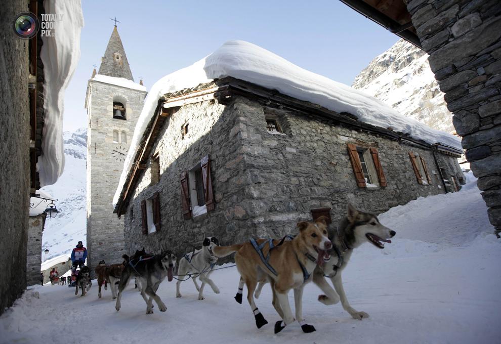 lagrande 013 Гонки на собачьих упряжках La Grande Odyssee