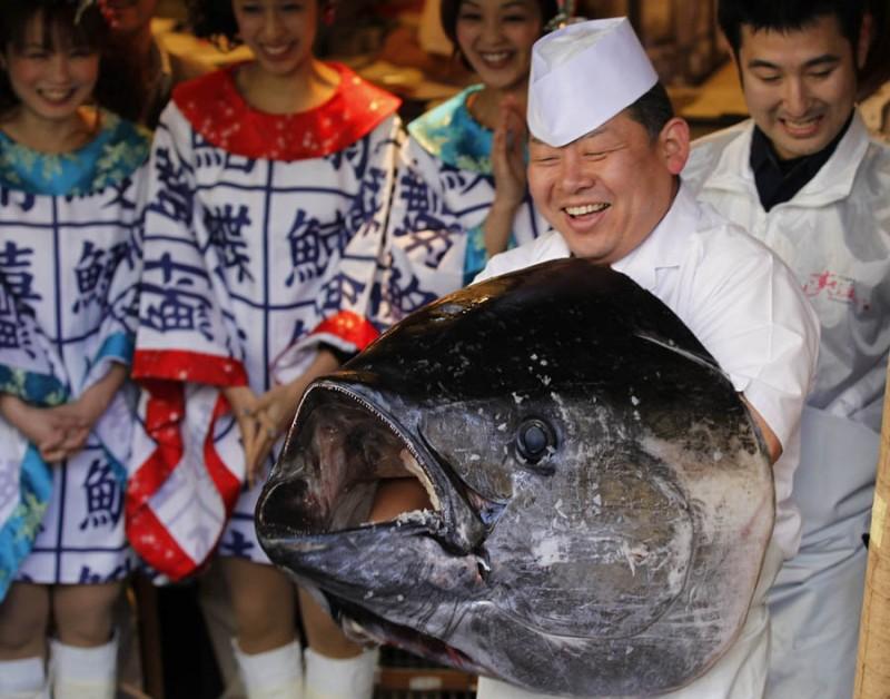 pb 120105 tuna da 04 800x628 В Японии разделали гигантского тунца за 736 тысяч долларов